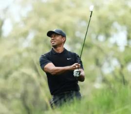Tiger Misses Cut at PGA